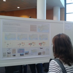 """Conferencia Esri 2013. Map Gallery 2013. Nuestro panel """"El proceso ferroviario en Andalucía"""". Fuente: Patricia Ferreira Lopes"""
