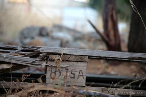 Thextile Hytasal. Espacios en tránsito en la antigua Hytasa. Fuente: Patricia Ferreira Lopes